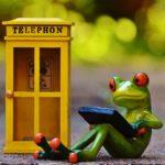 電話ボックスとカエル