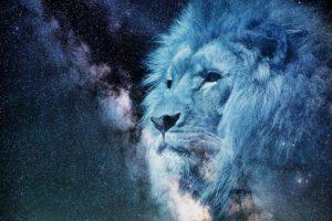 蒼いライオン